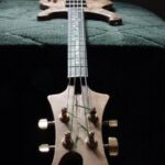 Some of the musical instruments that i designed and built by hand